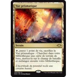 Terrain - Vue prismatique (R) [MH1]