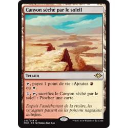 Terrain - Canyon séché par le soleil (R) Foil [MH1]