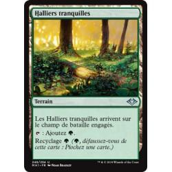 Terrain - Halliers tranquilles (U) Foil [MH1]