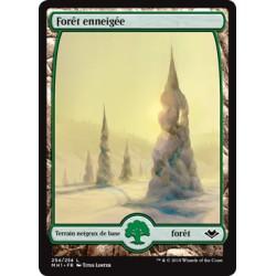 Terrain - Forêt enneigée (C) Foil [MH1]