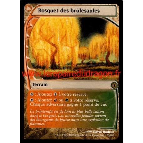 Terrain - Bosquet des Brûlesaules (R)
