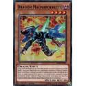 Yugioh - Dragon Magnarokkette (C) [SDRR]