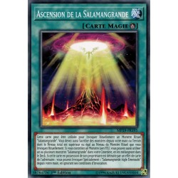 Yugioh - Ascension de la Salamangrande (C) [MP19]