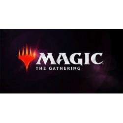 Magic PALM Qualifier - 07/12 à 11H