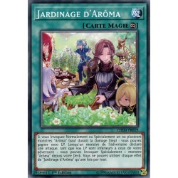 Yugioh - Jardinage d'Arôma (C) [CHIM]
