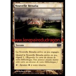 Terrain - Nouvelle Bénalia (U)