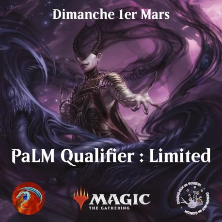 PaLM Qualifier : Limited