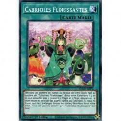 Yugioh - Cabrioles Florissantes (C) [ETCO]