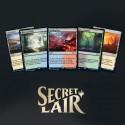 Secret Lair Ultimate Edition : Fetchs-lands - Magic The Gathering