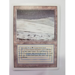 Revised - Tundra