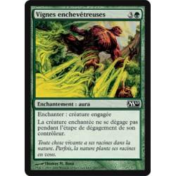 Verte - Vignes enchevêtreuses (C)